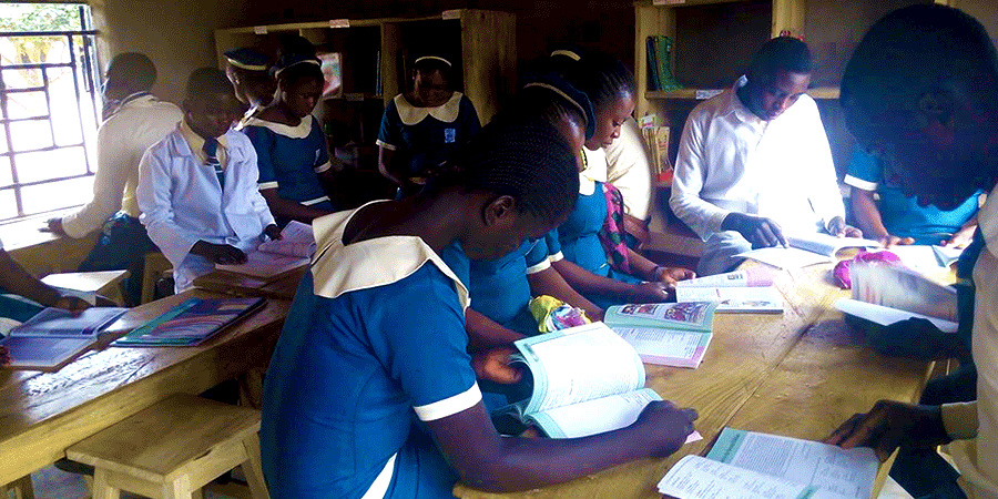 PAMSET Schools, Aliade: Taking Over The Private Sector